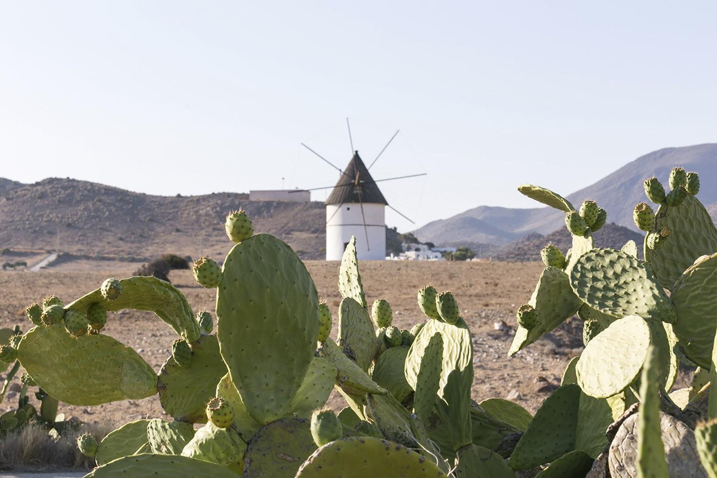 Cabo de Gata, Andalousie